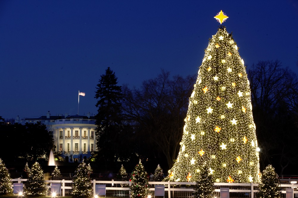 The White House and the 2009 National Christmas Tree