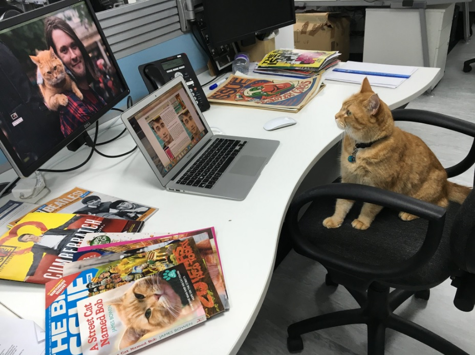 Bob gets some practise in the editor's chair. Photo: Adrian Lobb/Twitter